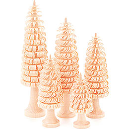 Coiled Trees with Trunk Natural  -  5 pieces  -  11cm / 4.3 inch